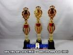 Piala Kejuaraan | Piala Ecer dan Grosir