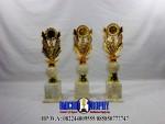 Piala Marmer minimalis, Piala marmer Tulungagung